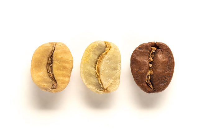 Postharvest Coffee: The Beginning of Flavour Diversity